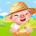 金币养猪场赚钱版