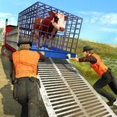 家畜运输卡车
