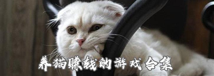 养猫赚钱的游戏合集-养猫合成赚钱游戏下载-最近很火的养猫赚钱游戏推荐