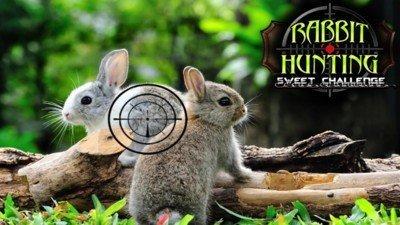 兔子狩猎模拟器