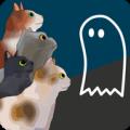 盯着鬼魂的猫