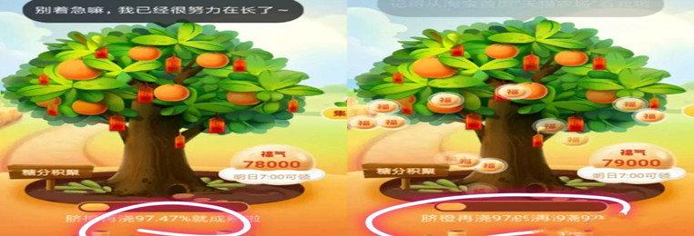 东东果园下载-东东果园红包版/回收版/官方版本-东东果园游戏大全
