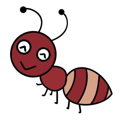 蚂蚁矿工app