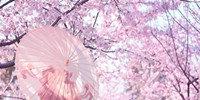 樱花影视类似软件合集
