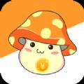 生钱蘑菇app